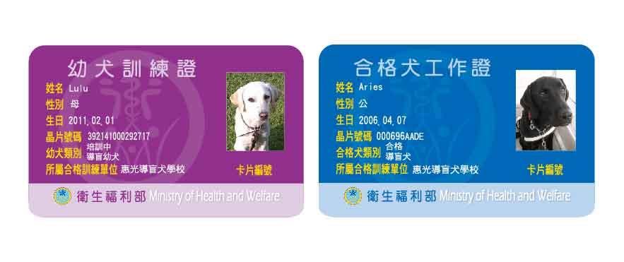紫色的幼犬訓練證和藍色的合格犬工作證