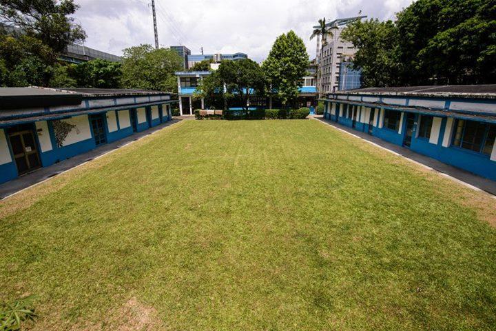 左右邊建築物中間的空地,為一大片可以讓狗狗們奔跑的大草皮。