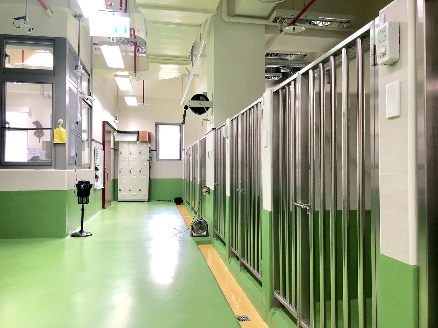 犬舍  有洗澡間、飼料間、醫務辦公室。與狗狗們休息的宿舍區!