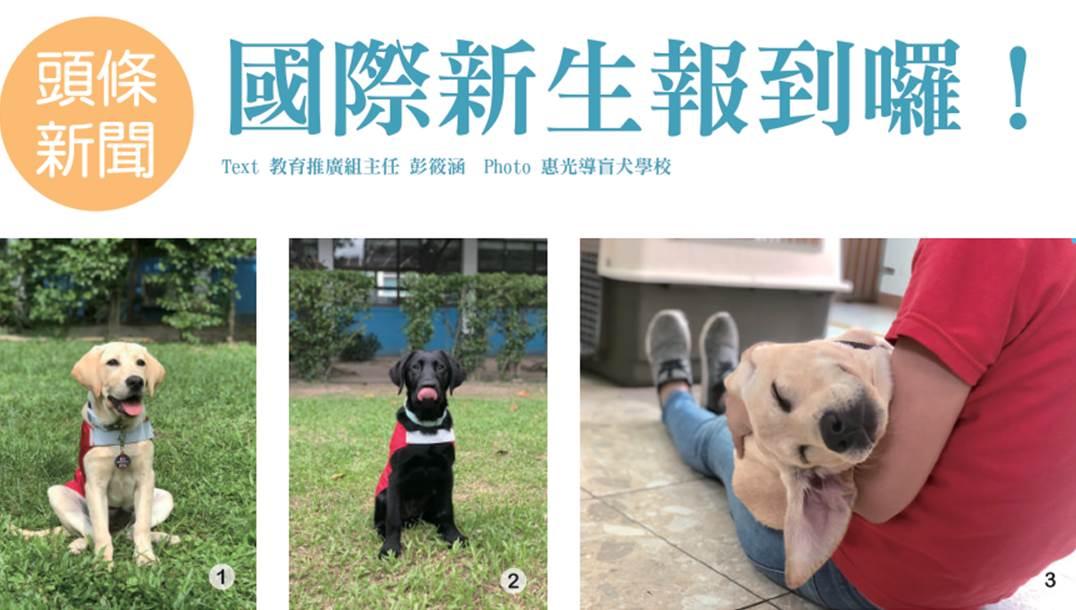 惠光郵報 ISSUE 18